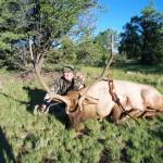 Charles Suttles, Elk
